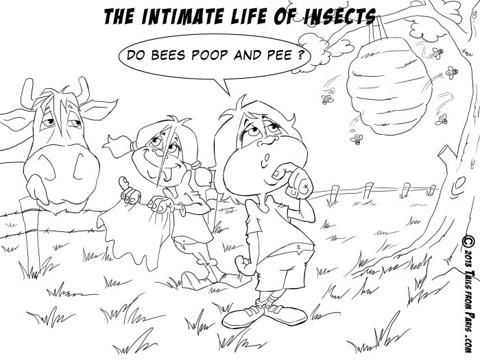 the intimate life of insects NB