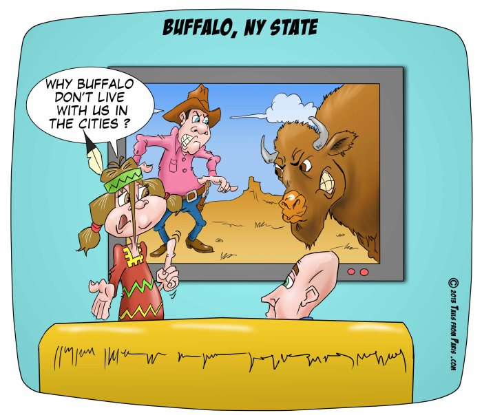 buffalo ny state